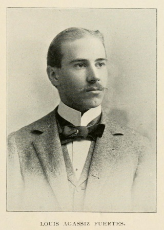 Louis Agassiz Fuertes, The Osprey, v.1. Biodiversity Heritage Library.