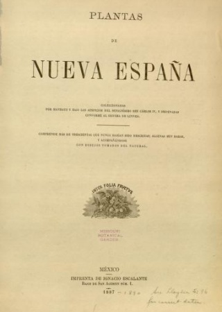 "Spanish title page from ""Plantae Novae Hispaniae."""